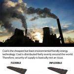 Cap2_F_coal